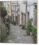Houses Along Alley In The Old Town Of Porto Wood Print