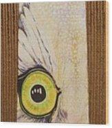 Houston Mascot Wood Print by David Kelly