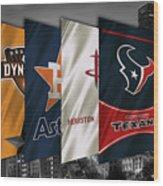 Houston Sports Teams 2 Wood Print