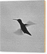 Hover Of The Hummingbird Wood Print