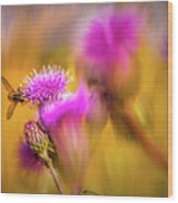 Hoverfly Thistle #g7 Wood Print