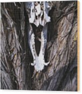 Howdy Javalina Wood Print