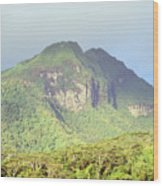 Huahine Forest And Mountaintop Wood Print