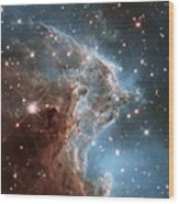Hubble's 24th Birthday Snap Of Monkey Head Nebula Wood Print