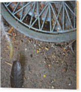 Hubcap And Feather Wood Print