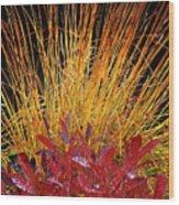 Huckleberry Glow Wood Print