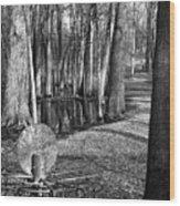 Hudson Mills Disc Golf Wood Print
