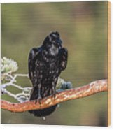 Huginn The Raven Wood Print