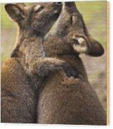 Hugs Wood Print