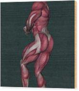 Human Anatomy 23 Wood Print