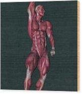 Human Anatomy 37 Wood Print