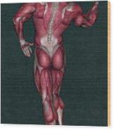 Human Anatomy 9 Wood Print