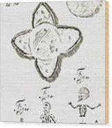 Human Embryo Development, 1685 Wood Print