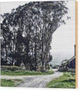 Humboldt Bay National Wildlife Refuge Wood Print