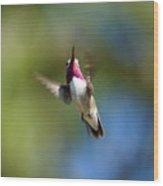 Hummer In Flight Wood Print