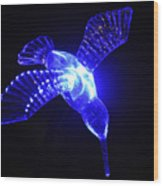 Humming Bird Light Wood Print