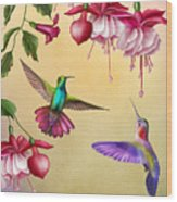 Humming Birds And Fuchsia-jp2784 Wood Print