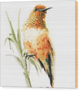 Hummingbird 2 Wood Print