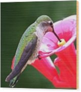 Hummingbird 33 Wood Print