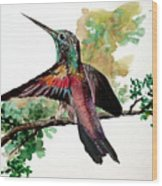 Hummingbird 5 Wood Print
