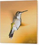 Hummingbird Agains The Sunset Wood Print