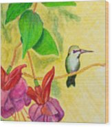 Hummingbird Amongst The Fuchsia Wood Print