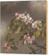 Hummingbird And Apple Blossoms Wood Print