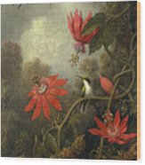 Hummingbird And Passionflowers Wood Print