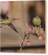 Hummingbird And Red Yucca Wood Print