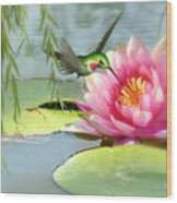 Hummingbird And Water Lily Wood Print
