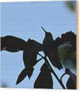 Hummingbird At Sunrise Silhouette Wood Print