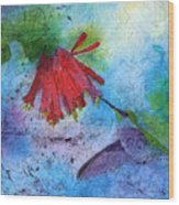 Hummingbird Batik Watercolor Wood Print