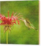 Hummingbird Bee Balm And Textures Wood Print