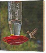 Hummingbird Coming For Dinner Wood Print