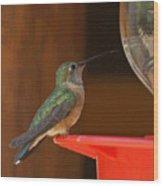 Hummingbird De Wood Print