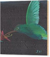 Hummingbird Feeding Wood Print by M Valeriano