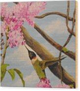 Hummingbird Feeding On Lilac Wood Print