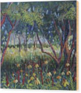 Hummingbird Gardens Wood Print