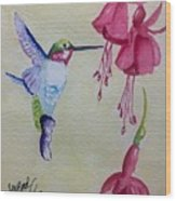 Hummingbird I Wood Print