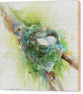 Hummingbird Nest Wood Print