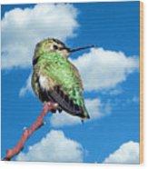 Hummingbird On High Wood Print