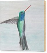 Hummingbird Painting Wood Print