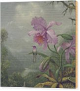 Hummingbird Perched On An Orchid Plant Wood Print
