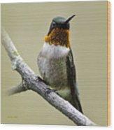 Hummingbird Portrait Square Wood Print