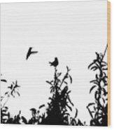 Hummingbird Silhouettes #1 Wood Print