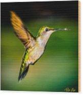 Hummingbird Sparkle Wood Print