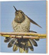 Hummingbird Spreading Wings Wood Print