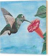 Hummingbird Trumpet Wood Print