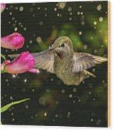Hummingbird Visits Flowers In Raining Day Wood Print