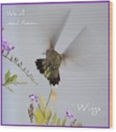 Hummingbird Wings Wood Print